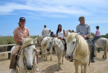 Horse back riding in the Camargue, organised by ILA